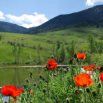 Wyoming Recreational Properties